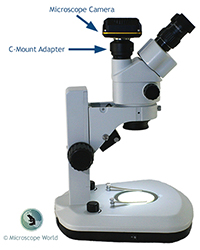 Microscope Camera and C-Mount Illustration
