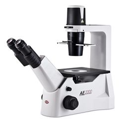 Motic Inverted Microscope